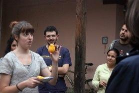 Un mango como fruta representativa de Chiapas